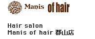 mains of hair